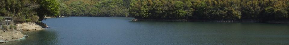 石手川ダム誕生秘話と貯水率