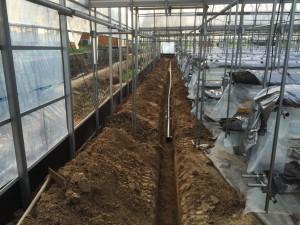 松山市八反地 観光いちご農園 排水設備工事