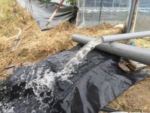 給水ポンプ選定作業