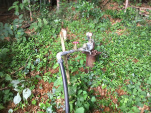温泉井のポンプ取替工事(西条市小松町)