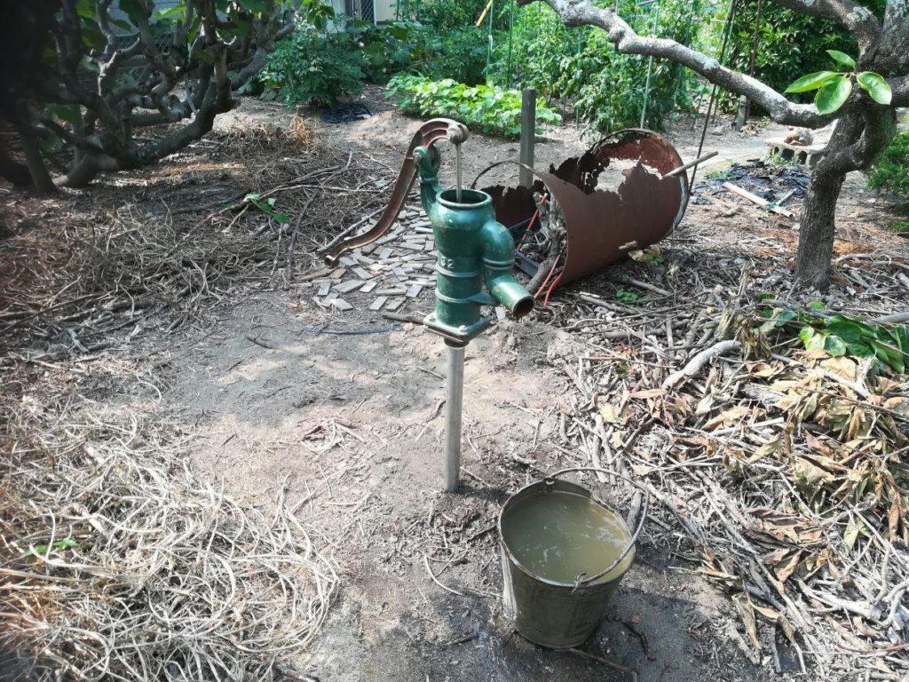 畑に打抜き井戸と手押しポンプ