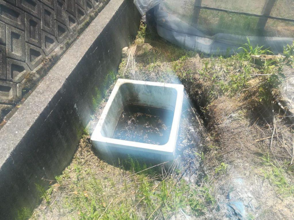 井戸掘り 現場視察